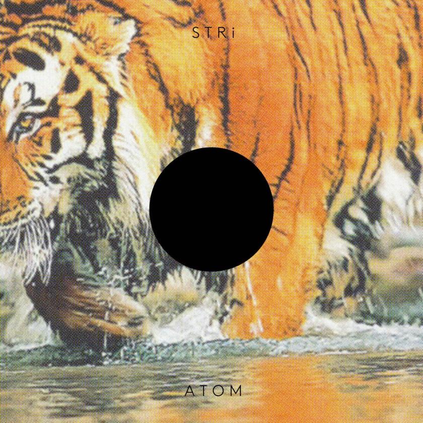 STRi - Atom