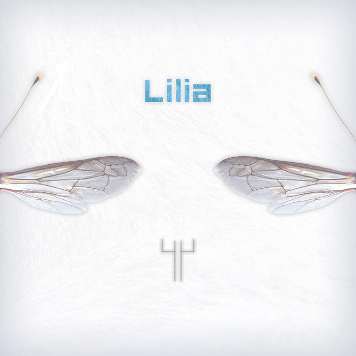 Lilia - 44